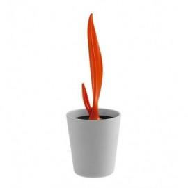 Porzionatore gelato GLACIES Arancione- Legnoart SPICY